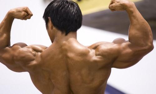 Muscle Flex Man